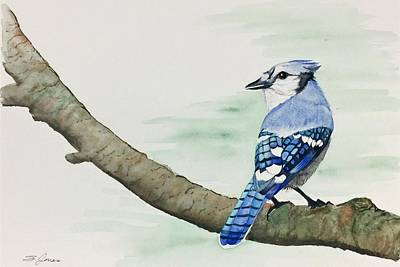 Painting - Jay In The Pine by Sonja Jones