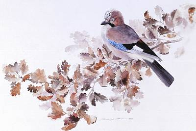 Painting - Jay On A Dried Oak Branch by Attila Meszlenyi