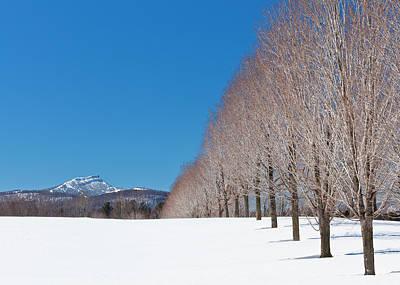 Photograph - Jay Peak Winter Landscape by Alan L Graham