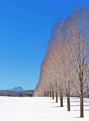 Photograph - Jay Peak Winter Scenic by Alan L Graham
