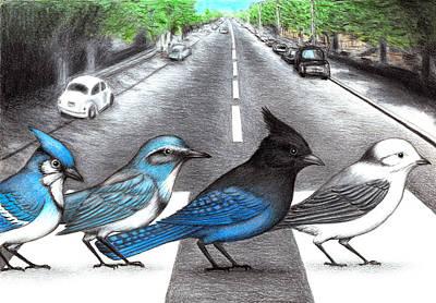Jay Walking Art Print by Don McMahon