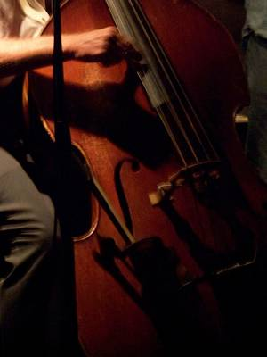 Upright Bass Photograph - Jazz Estate 1 by Anita Burgermeister