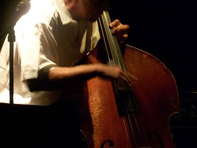 Upright Bass Photograph - Jazz Estate 5 by Anita Burgermeister