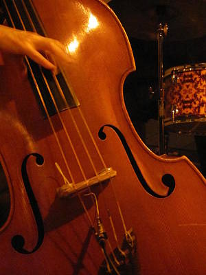 Photograph - Jazz Upright Bass by Anita Burgermeister