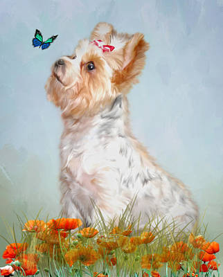 Parti Photograph - Jazzy And Miss Butterfly by Mary Timman