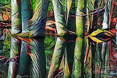 Photograph - Jazzy Swamp by Geraldine DeBoer