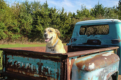 Jd Ready For A Ride Art Print by Laura Deerwester