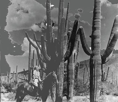Featured Tapestry Designs - Jean Harlow Bombshell 1933 Saguaro National Monument Tucson Arizona  2016 by David Lee Guss