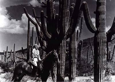 Studio Grafika Patterns Rights Managed Images - Jean Harlow Bombshell 1933 Saguaro National Monument Tucson Arizona Duo-tone 2008 Royalty-Free Image by David Lee Guss