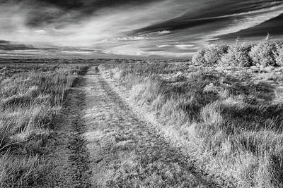 Photograph - Jeep Track To Nowhere by Greg Nyquist