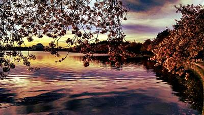 Photograph - Jefferson At Sunrise by Kevin D Davis