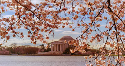 Photograph - Jefferson Memorial And Cherry Blossom by Rima Biswas