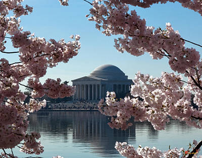 Photograph - Jefferson Memorial At Cherry Blossom Time On The Tidal Basin Ds008 by Gerry Gantt
