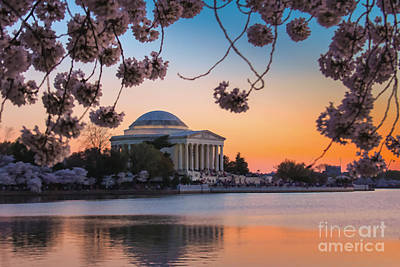 Ollivrosa Wall Art - Photograph - Jefferson Memorial At Dusk by Amy Sorvillo