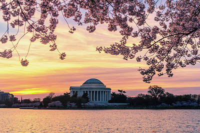Photograph - Jefferson Memorial At Sunrise With Blossoms by Craig Szymanski