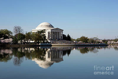 Photograph - Jefferson Memorial Cherry Blossom Festival by Steven Frame
