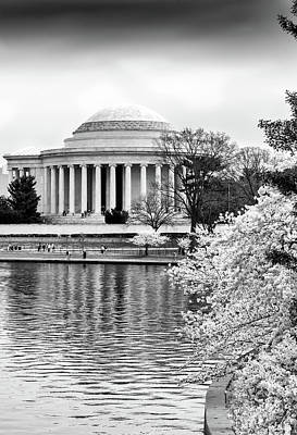 Photograph - Jefferson Memorial Cherry Blosum Time by Paul Seymour