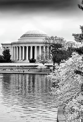 Jefferson Memorial Cherry Blosum Time Art Print