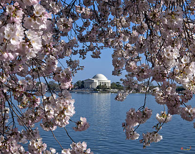Cherry Blossoms Photograph - Jefferson Memorial On The Tidal Basin Ds051 by Gerry Gantt