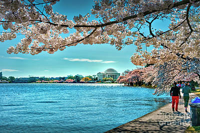 Photograph - Jefferson Monument Tidal Basin Spring by David Zanzinger