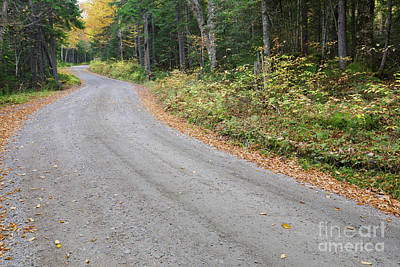 Jefferson Notch Road - Low And Burbank's Grant New Hampshire  Art Print by Erin Paul Donovan