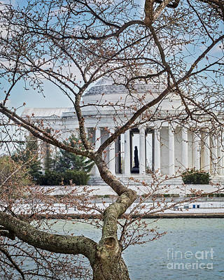 Photograph - Jefferson Through The Cherry Buds I by Karen Jorstad