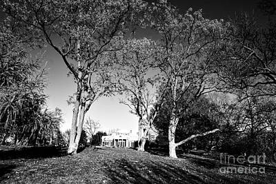 Photograph - Jefferson's Monticello by Merle Grenz