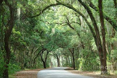 Photograph - Jekyll Island Arches by Frances  Dillon