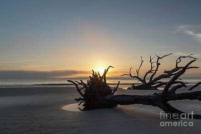 Photograph - Jekyll Island by Robert Loe