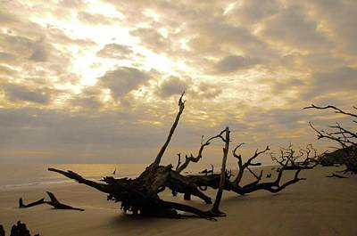 Photograph - Jekyll Island Sunrise by Colleen Keller Breuning