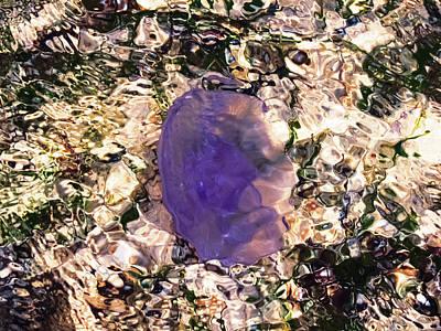 Jellyfish Photograph - Jellyfish And Luminous Water by Nat Air Craft