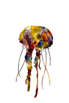 Photograph - Jellyfish by Michael Colgate