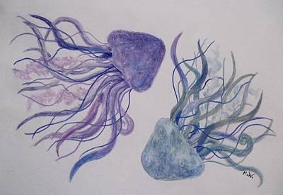 Drawing - Jellyfish Study by Megan Walsh