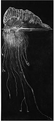 Jellyfish With Cords Art Print by Elizabeth Comay