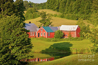 Art Print featuring the photograph Jenne Farm Reflection by Susan Cole Kelly