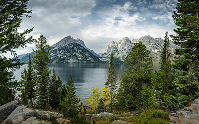 Photograph - Jenny Lake Overlook by Dakota Light Photography By Dakota