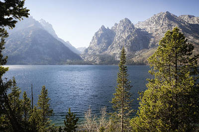 Photograph - Jenny Lake by Shirley Mitchell