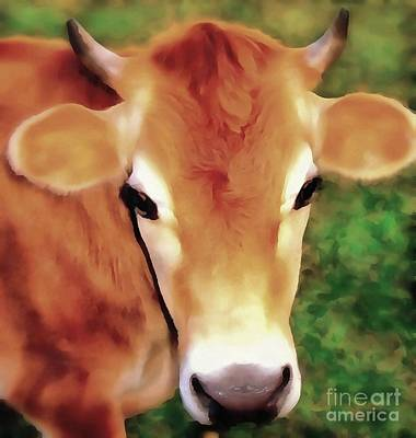 Photograph - Jersey Girl - Jersey Cow by Janine Riley