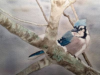 Painting - Cold Winter's Jay by Sonja Jones