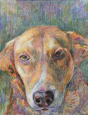 Mixed Labrador Retriever Painting - Jersie Girl by Saralyn Friedrich
