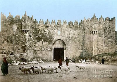 Photograph - Jerusalem: Damascus Gate by Granger