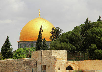 Photograph - Jerusalem Dome And Trees by Munir Alawi