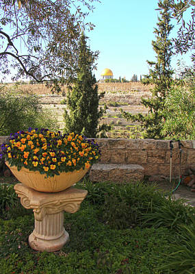 Photograph - Jerusalem Flowers by Munir Alawi