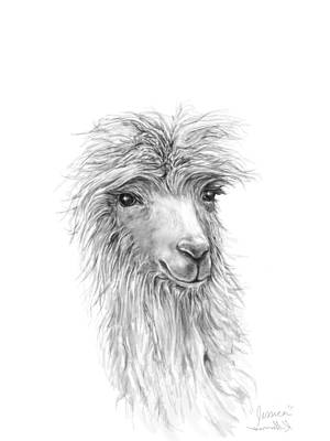Llama Wall Art - Drawing - Jessica by K Llamas