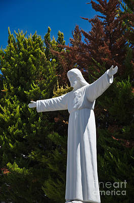 Christian Photograph - Jesus Statue And Pine Trees by Angelo DeVal