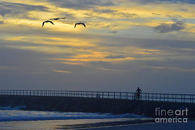 Lone Pelican Photograph - Jetty Sunrise With Pelicans And Cyclist 12-27-15 by Julianne Felton
