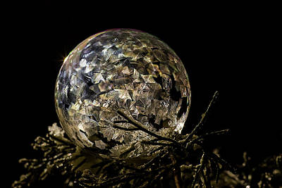 Photograph - Jewel Bubble by Shelly Gunderson