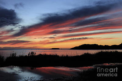 Reflections Photograph - Jewel Of The Morning by Carolyn Brown