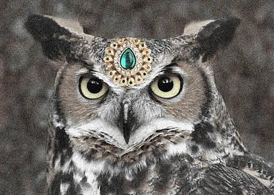 Photograph - Jewelled Owl by Sumit Mehndiratta