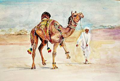 Painting - Jewellery And Trappings On Camel. by Khalid Saeed